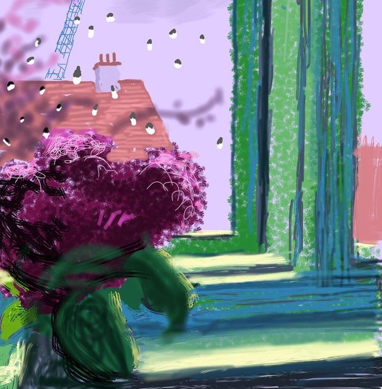منظرههایی از اتاق دیوید هاکنی