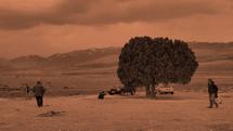 ثبت تک درخت به اسم کیارستمی