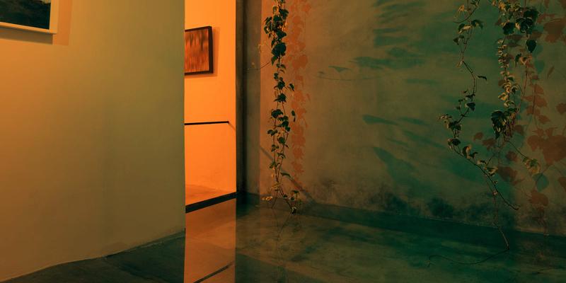 گالری گردی تهران در هفتهی چهارم پاییز
