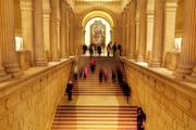 درآمد موزهها یک شبه ناپدید شد!