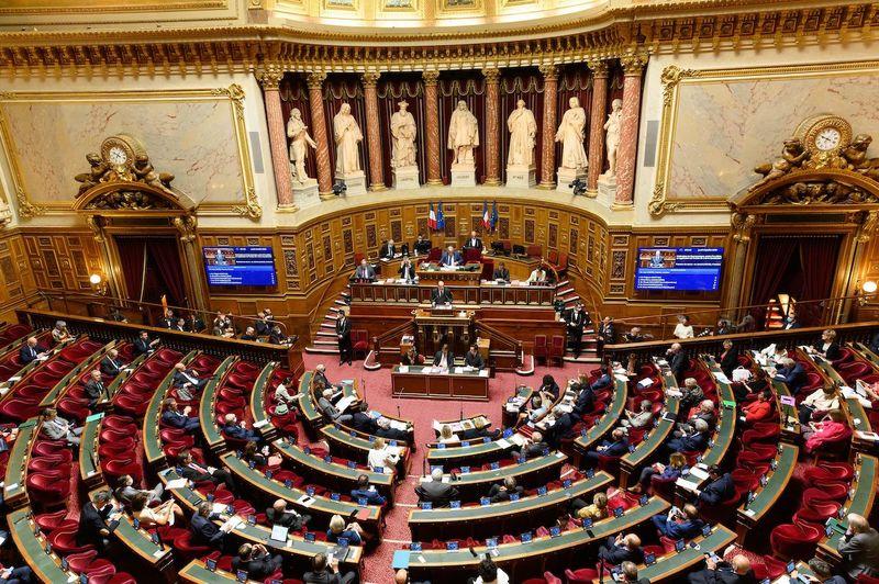 مجلس سنای فرانسه به استرداد آثار باستانی بنین و سنگال رای داد