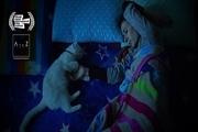 فیلم «گربهها» به جشنواره آمریکایی راه یافت