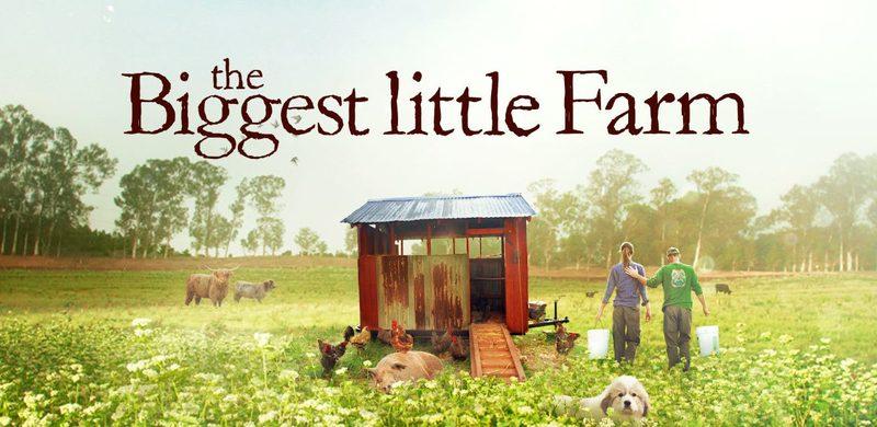 بزرگترین مزرعه کوچک پیشتاز نامزدها